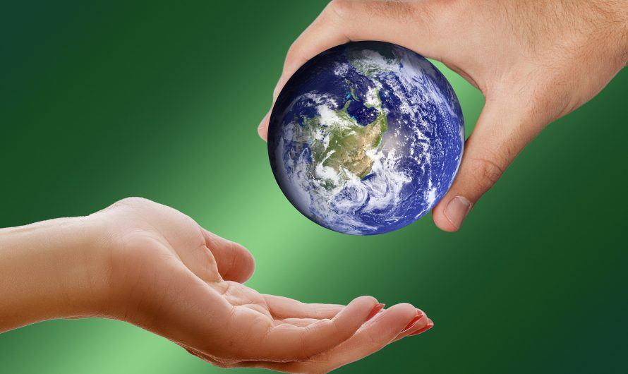The (Ecological) Footprint You Leave Behind